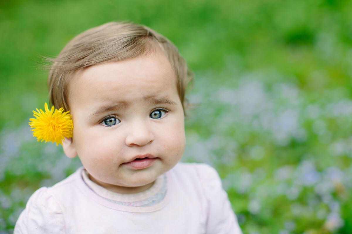 Baby hat Löwenzahn am Ohr