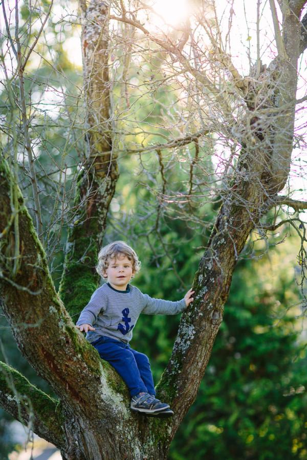 Kind sitzt in Baumwipfel